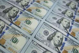 Nga muốn tiếp tục giảm sự phụ thuộc vào USD