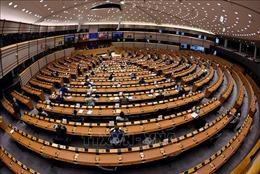 Nghị viện châu Âu họp phiên toàn thể trực tiếp vào tháng 6 tới