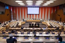 Việt Nam và HĐBA: Thông qua Tuyên bố Chủ tịch về phòng chống khủng bố quốc tế