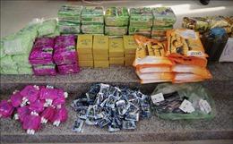 Thông tin thêm về vụ bắt gần 90 kg ma túy tại Đồng Tháp