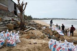 Quảng Ngãi: Đầu tư 100 tỷ đồng xây kè chống sạt lở bờ biển xã Bình Hải