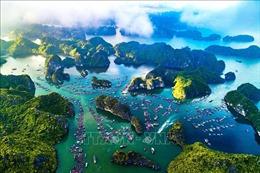 Hoàn thiện hồ sơ đề cử 'Vịnh Hạ Long - Quần đảo Cát Bà' là Di sản thế giới