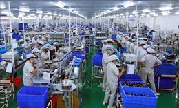 Chủ tịch SCCI: Nhiều doanh nghiệp Nhật Bản muốn mở rộng đầu tư ở Việt Nam