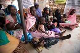 Tỷ lệ lạm phát ở Sudan lên tới trên 300%