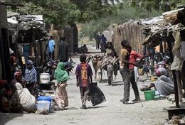 Bạo lực giữa các cộng đồng dân cư tiếp tục leo thang tại Chad