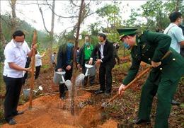 Thừa Thiên - Huế phát động Tết trồng cây Xuân Tân Sửu