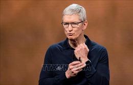 Cổ đông Apple đồng ý thông qua mức lương năm 2020 cho CEO Tim Cook