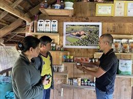 Sản phẩm OCOP giúp tăng thu nhập cho người dân nông thôn