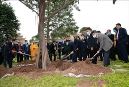 Nét đẹp Tết trồng cây mang lại màu xanh cho đất nước