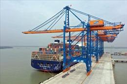 Hàng container thông qua cảng biển Bà Rịa-Vũng Tàu tăng 21%