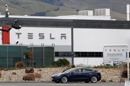 Cháy lớn tại nhà máy sản xuất ô tô điện của Tesla, Mỹ