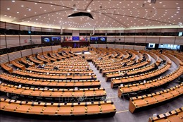 Nghị viện châu Âu hoãn lịch trình thông qua thỏa thuận thương mại EU-Anh