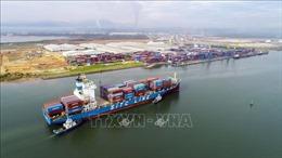 Logistic đón đầu các FTA