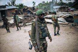 Tấn công vũ trang ở CHDC Congo và Niger