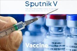 Bộ Y tế Nga: Vaccine Sputnik V phù hợp để chủng ngừa lại