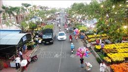 Trình Thủ tướng Chính phủ công nhận thành phố Tây Ninh đạt đô thị loại II