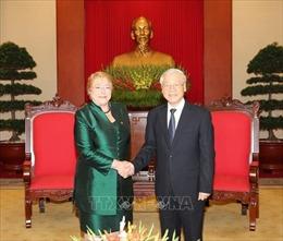 Việt Nam - Chile: Mối quan hệ vượt qua khoảng cách địa lý