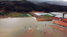Lâm Đồng: Xử lý tình trạng hồ Đan Kia - Suối Vàng cạn kiệt, ô nhiễm