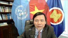 Việt Nam kêu gọi tăng cường các nỗ lực thực hiện hiệp định hoà bình tại Mali