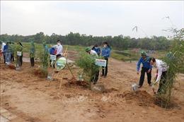 Đồng Tháp hưởng ứng Chương trình trồng 1 tỷ cây xanh