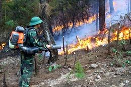 Nghệ An: Kịp thời khống chế vụ cháy rừng tại xã Diễn Lộc