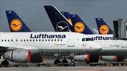 Đức, Nga nối lại hoạt động hàng không sau sự cố không cấp phép bay