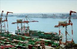 Nhật Bản soạn thảo chiến lược tăng trưởng kinh tế mới