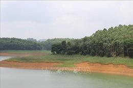 Chính sách chi trả dịch vụ môi trường rừng: Tạo nguồn sinh kế ổn định, lâu dài