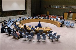 Hội đồng Bảo an LHQ đánh giá hiệu quả hoạt động sau 15 tháng bị tác động