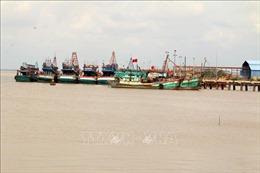 Tàu cá khai thác vi phạm vùng biển nước ngoài giảm mạnh