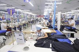 Doanh nghiệp dệt may mong muốn được mua vaccine tiêm cho lao động