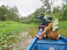 Bảo tồn các hệ sinh thái ở Đồng bằng sông Cửu Long