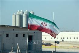 Nhà máy điện hạt nhân Bushehr của Iran hoạt động trở lại