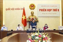Chủ tịch Quốc hội chủ trì Phiên họp thứ 8 của Hội đồng Bầu cử quốc gia