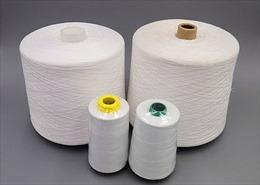Sắp tổ chức tham vấn điều tra chống bán phá giá sợi dài polyester
