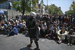 Lộ trình nào 'hồi sức' cho Afghanistan?