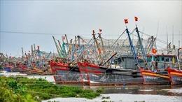Các phương tiện và người lao động ở Thanh Hóa đã vào tránh trú bão an toàn