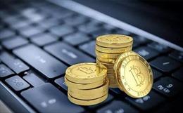 Đường dây đánh bạc trực tuyến có 114.000 người chơi, trị giá hơn 1 tỷ USD