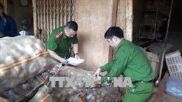Lại phát hiện khoai tây Trung Quốc trộn đất đỏ thành khoai Đà Lạt