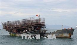 Tàu cá cùng 53 ngư dân gặp nạn đã về bờ an toàn