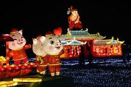 Lung linh sắc màu đèn lồng đón Xuân tại nhiều quốc gia châu Á