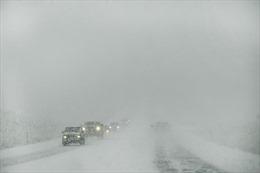Bão tuyết bất thường đổ bộ vào Chicago, hàng trăm chuyến bay bị hủy