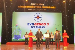 """Công ty nhiệt điện Phú Mỹ nhận giải thưởng """"Năng lượng bền vững năm 2019"""""""