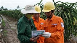 EVNSPC: Đẩy mạnh khuyến cáo phòng chống tai nạn điện ở Đồng bằng Sông Cửu Long