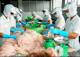 Thực phẩm Sao Việt và phương châm vì sức khỏe người tiêu dùng