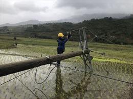 Kon Tum: Khắc phục lưới điện sau bão lũ