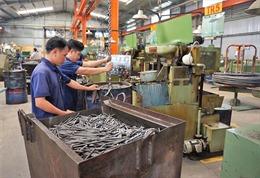 Ngành công nghiệp trong bối cảnh hội nhập - Bài cuối: Phát triển sản phẩm công nghiệp chủ lực địa phương