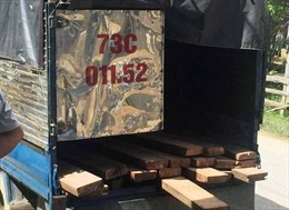 Truy đuổi xe chở gỗ, ba cán bộ kiểm lâm bị đánh trọng thương