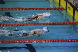 Đại hội thể thao toàn quốc lần thứ VIII: Phá nhiều kỷ lục Đại hội và kỷ lục Quốc gia