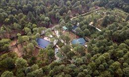 Đã xử lý hơn 50% số vụ vi phạm đất rừng Sóc Sơn